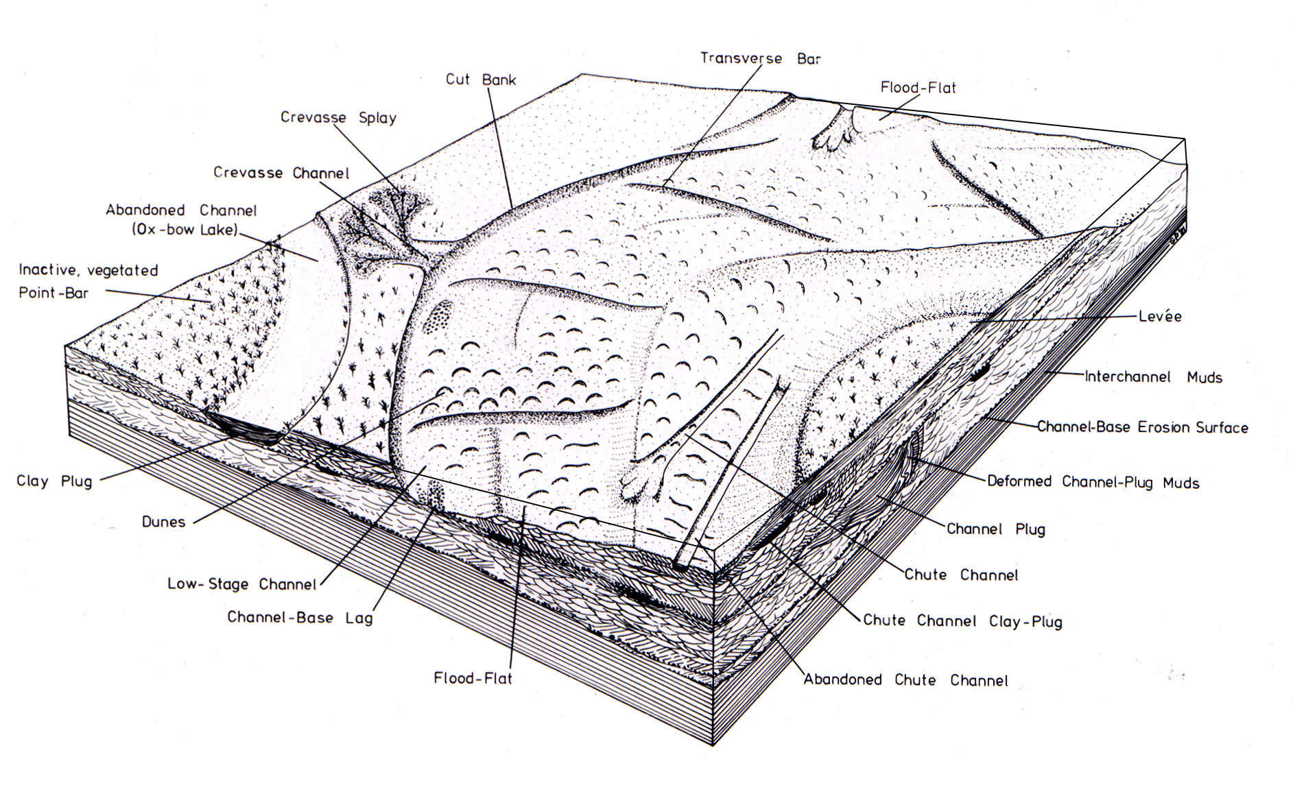 Quaternary Palaeoenvironments Group (QPG) » History of the ...